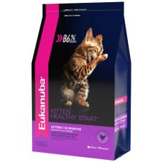 Купить Eukanuba Kitten Healthy Start для котят, беременных и кормящих кошек, с домашней птицей