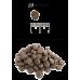 Купить Blitz Holistic Lamb & Salmon Adult Small Breeds беззерновой сухой корм для взрослых собак мелких пород с ягненком и лососем