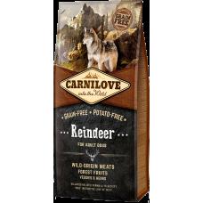 Купить Carnilove Reindeer for Adult Dogs беззерновой корм с мясом северного оленя для взрослых собак всех пород