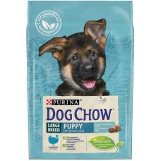 Купить PURINA DOG CHOW Large Breed Puppy с индейкой для щенков крупных пород