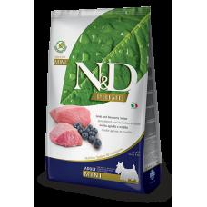 Купить N&D Prime Lamb and Blueberry Recipe Adult Mini полнорационный беззерновой сухой корм с ягнёнком и черникой для взрослых собак мелких пород