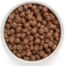 Купить Grandorf Duck & Sweet Potato Adult All Breeds сухой беззерновой корм класса холистик с уткой и картофелем для взрослых собак всех пород от 1 года