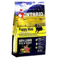 Ontario Puppy Mini полнорационный сухой корм с ягненком и рисом для щенков малых пород