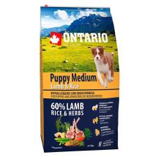 Ontario Puppy Medium полнорационный сухой корм с ягненком и рисом для щенков средних пород
