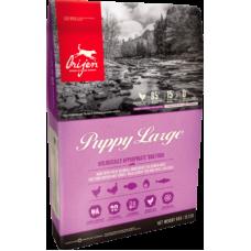 Купить Orijen Puppy Large беззерновой корм с цыпленком для щенков крупных пород