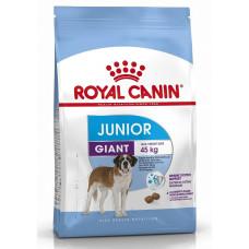 Купить Royal Canin Giant Junior корм для щенков очень крупных пород с 8 до 18/24 месяцев (вес взрослой собаки более 45 кг)