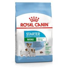 Royal Canin Mini Starter Mother & Babydog корм для щенков в период отъема до 2-х месяцев, беременных и кормящих сук