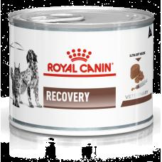Royal Canin Recovery Canine/Feline влажная диета для собак и кошек в период анорексии, выздоровления